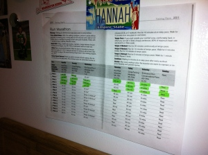 All race training plans go on the fridge.  Low tech, but my best motivator.
