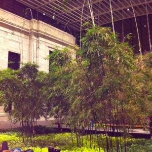 CMA Atrium